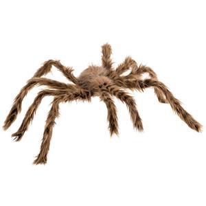 Aranha Castanha Peluda