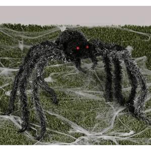 Aranha Peluda