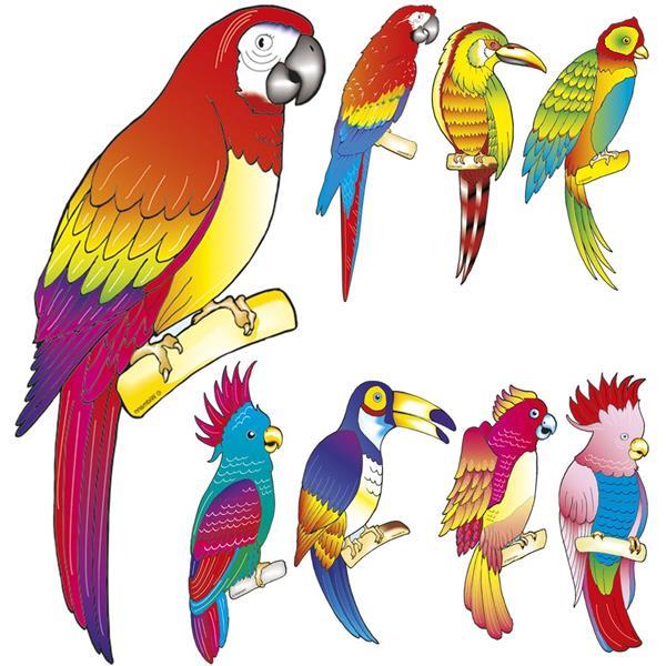 Aves Tropicais Decorativas