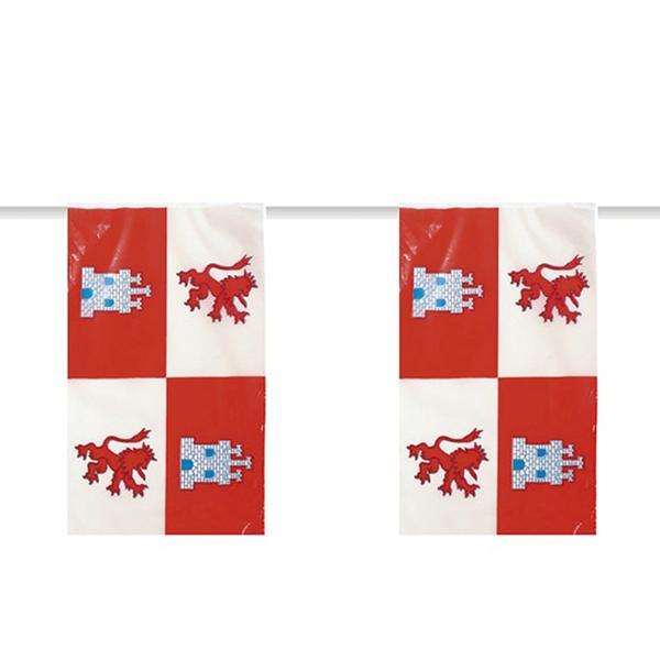 Bandeiras Castilla Leon, 50 mt