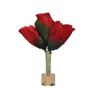Apariçao Rosas nos Dedos