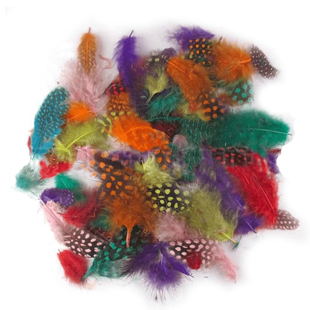 Conjunto Penas Coloridas, 6 cm
