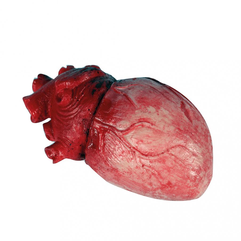 Coração Humano Latex, 14 Cm