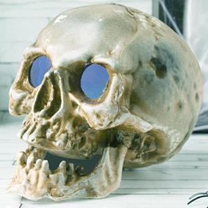 Crânio com Luz Led Multicolor, 20 cm