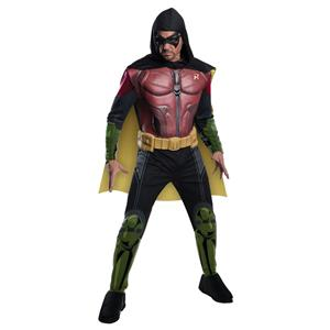 Fato Robin Batman, Adulto