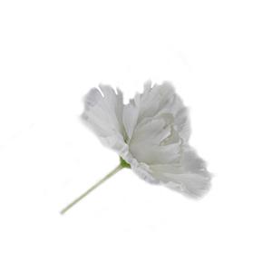Flor Branca Decoração