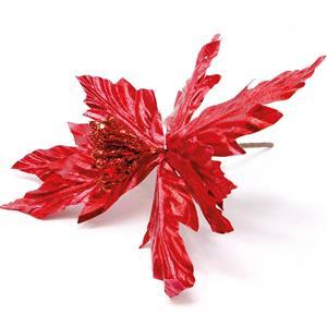 Folha Vermelha, 20 cm