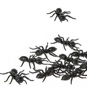 Formigas Pretas Halloween, Pack 12 Uni.
