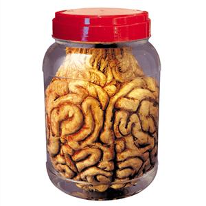 Frasco de Laboratório com Cérebro, 20 cm