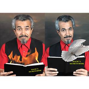 Livro Fogo em Pomba - Dove and fire book - Tora Magic ;