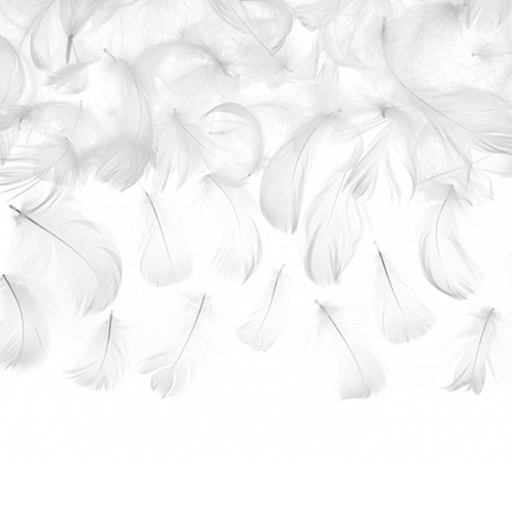 Penas Brancas Decorativas, 3 gr.
