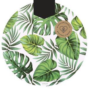 Pratos Folha de Palmeira, 23 cm, 6 unid.