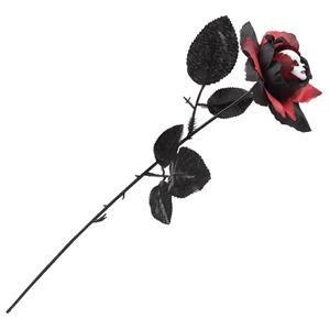 Rosa Preta com Cabeça