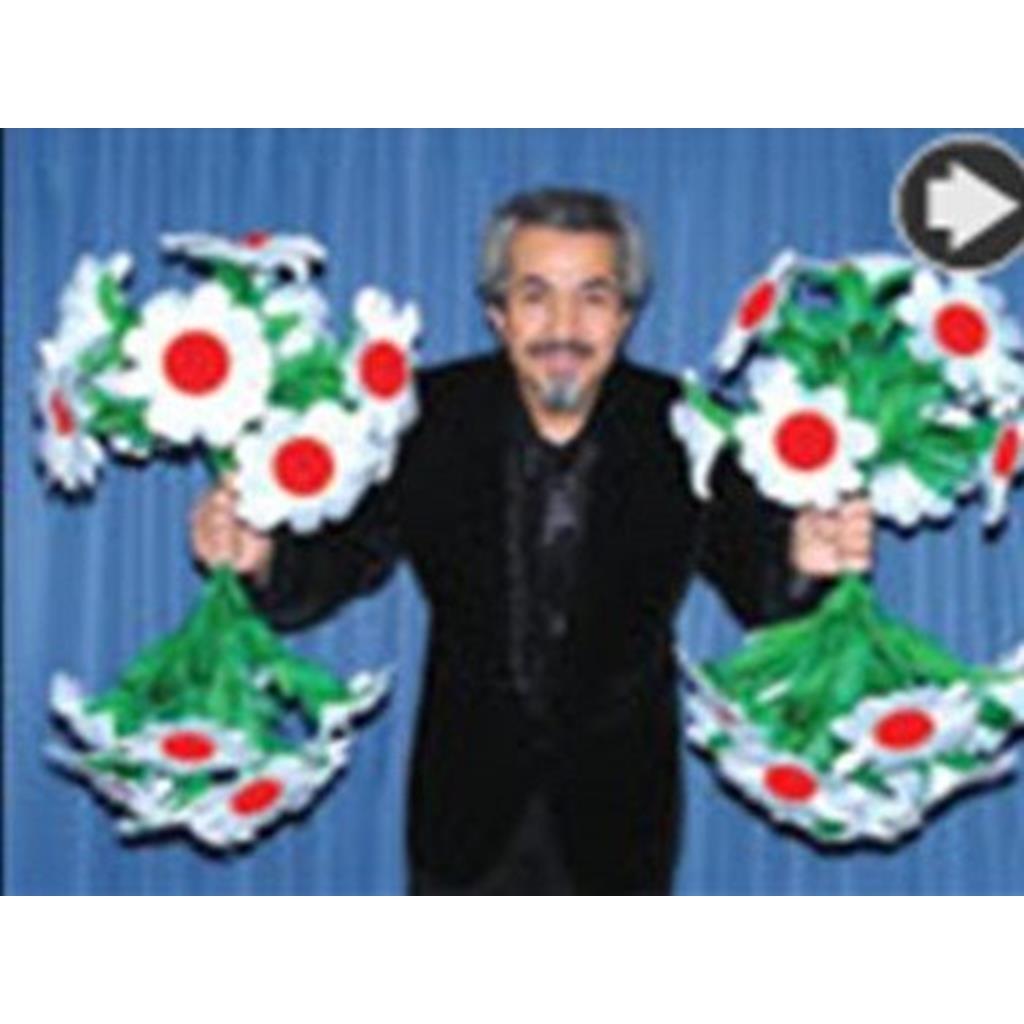 """Aparição 4 Ramos de Flores -""""Appearing one Bouquet/four Bouq"""