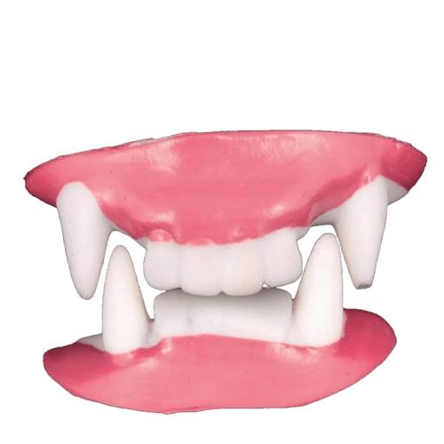 Dentes | Dentaduras