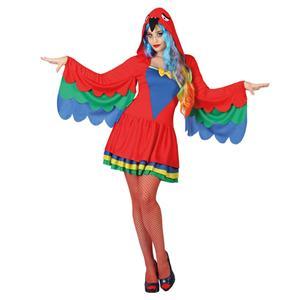 Fato Papagaio Mulher