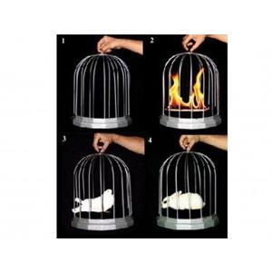 Gaiola Fogo Dupla aparição - Tora Magic Fire Cage ;