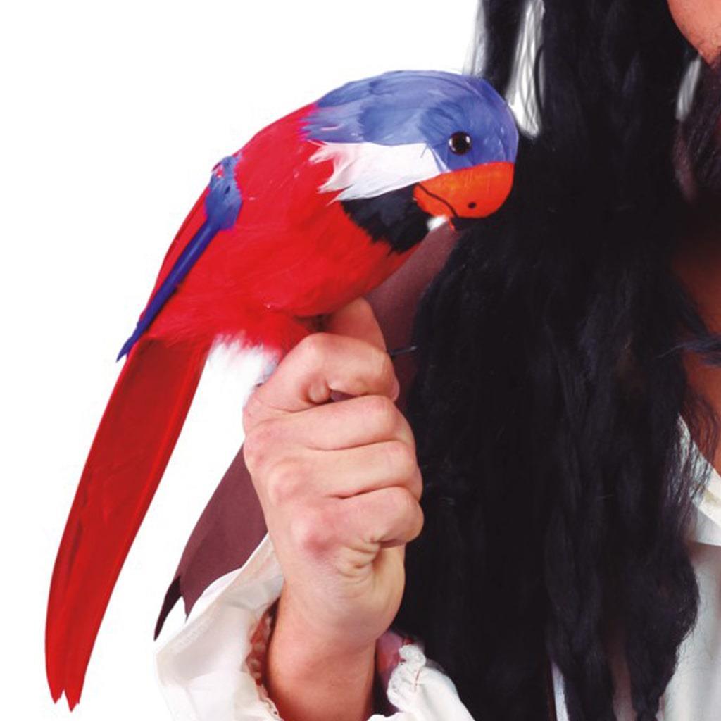Papagaio Decorativo