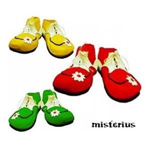Sapatos Palhaço com Flor, criança